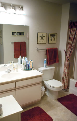 Clybourn Place - Bathroom