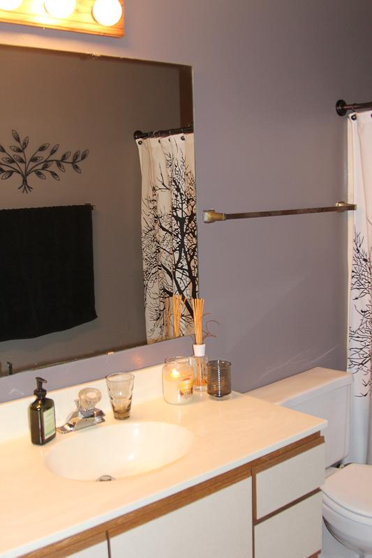 Pheasant Lane - Bathroom